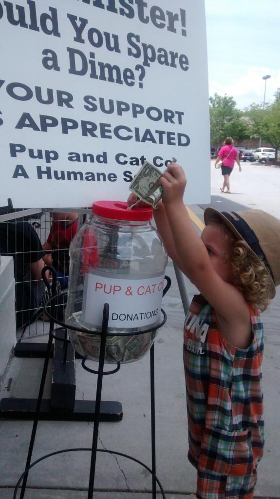 Little boy donating 1