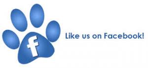 Like us on FB pawprint
